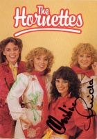 The Hornettes & Gold